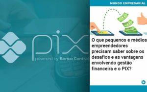 O Que Pequenos E Médios Empreendedores Precisam Saber Sobre Os Desafios E As Vantagens Envolvendo Gestão Financeira E O Pix Organização Contábil Lawini - Contabilidade em Joinville - SC   Dominium Contabilidade